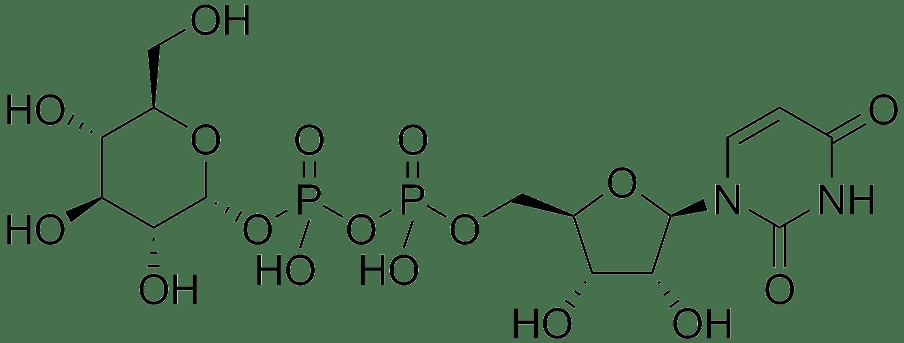 Uridine Diphosphate Glucose; UDP Glucose; UDPG; Uridine