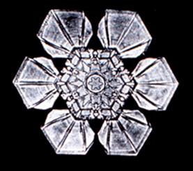 File:Snowflake2.png