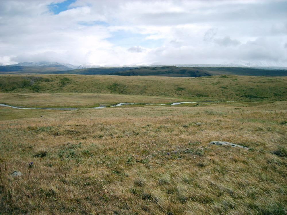https://i0.wp.com/upload.wikimedia.org/wikipedia/commons/f/f1/Ukok_Plateau.jpg
