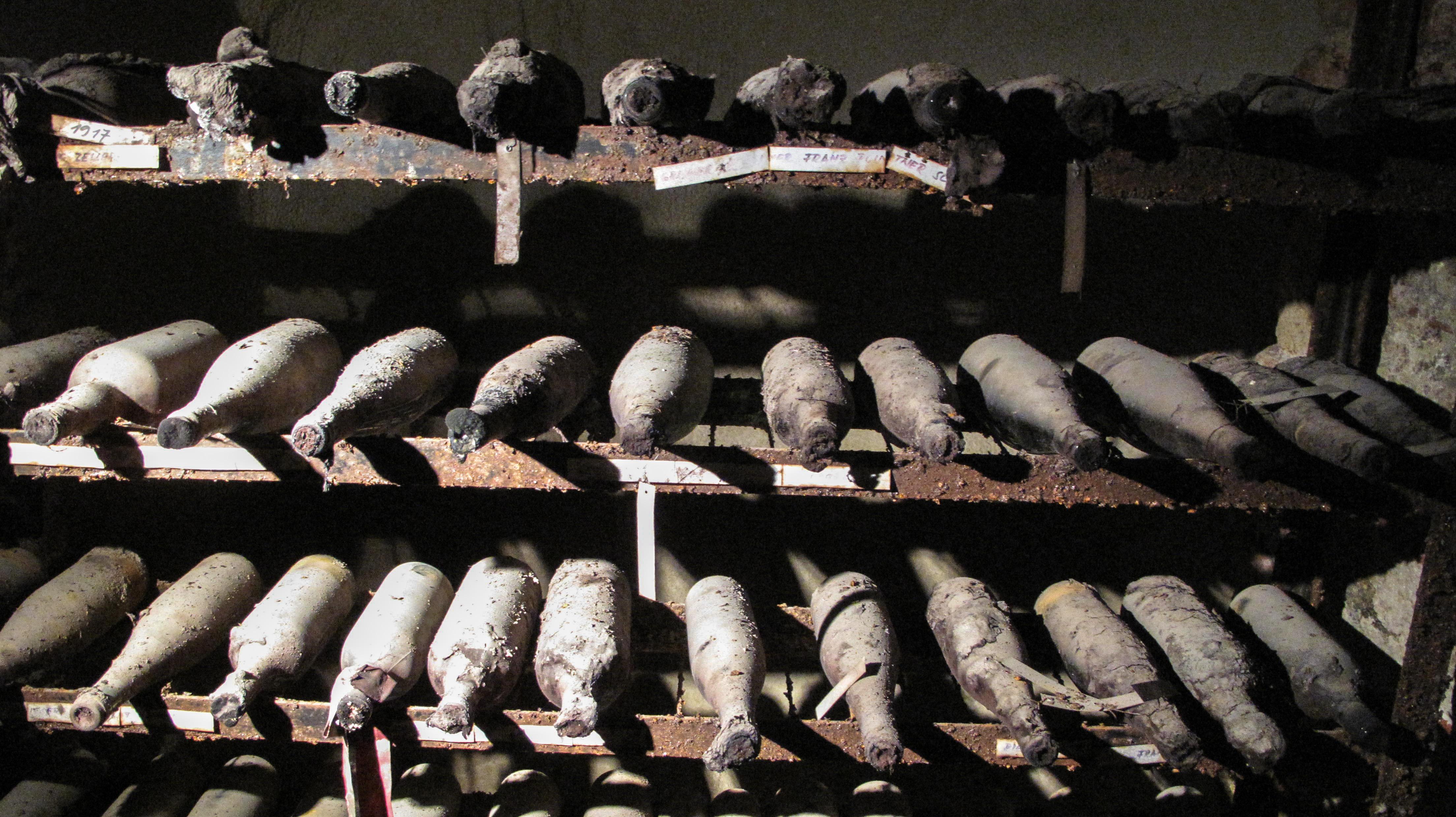 Wine aging in a cellar in Austria.