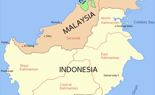 Borneo Wikipedia