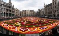 Fil:Brussels floral carpet E.jpg  Wikipedia