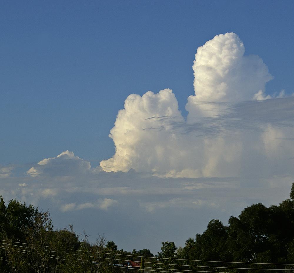 Towering cumulus.