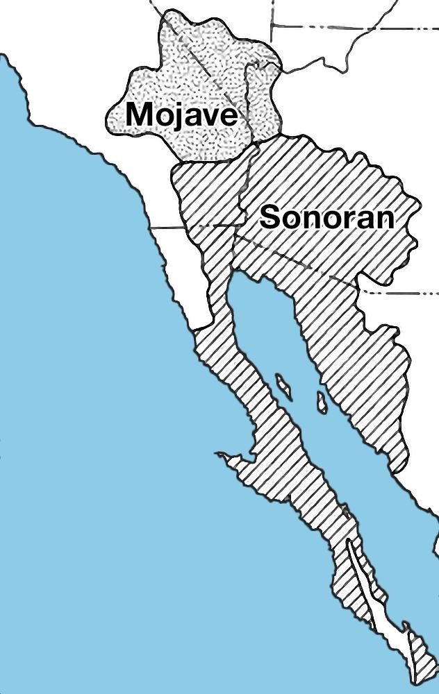 索諾然沙漠區域