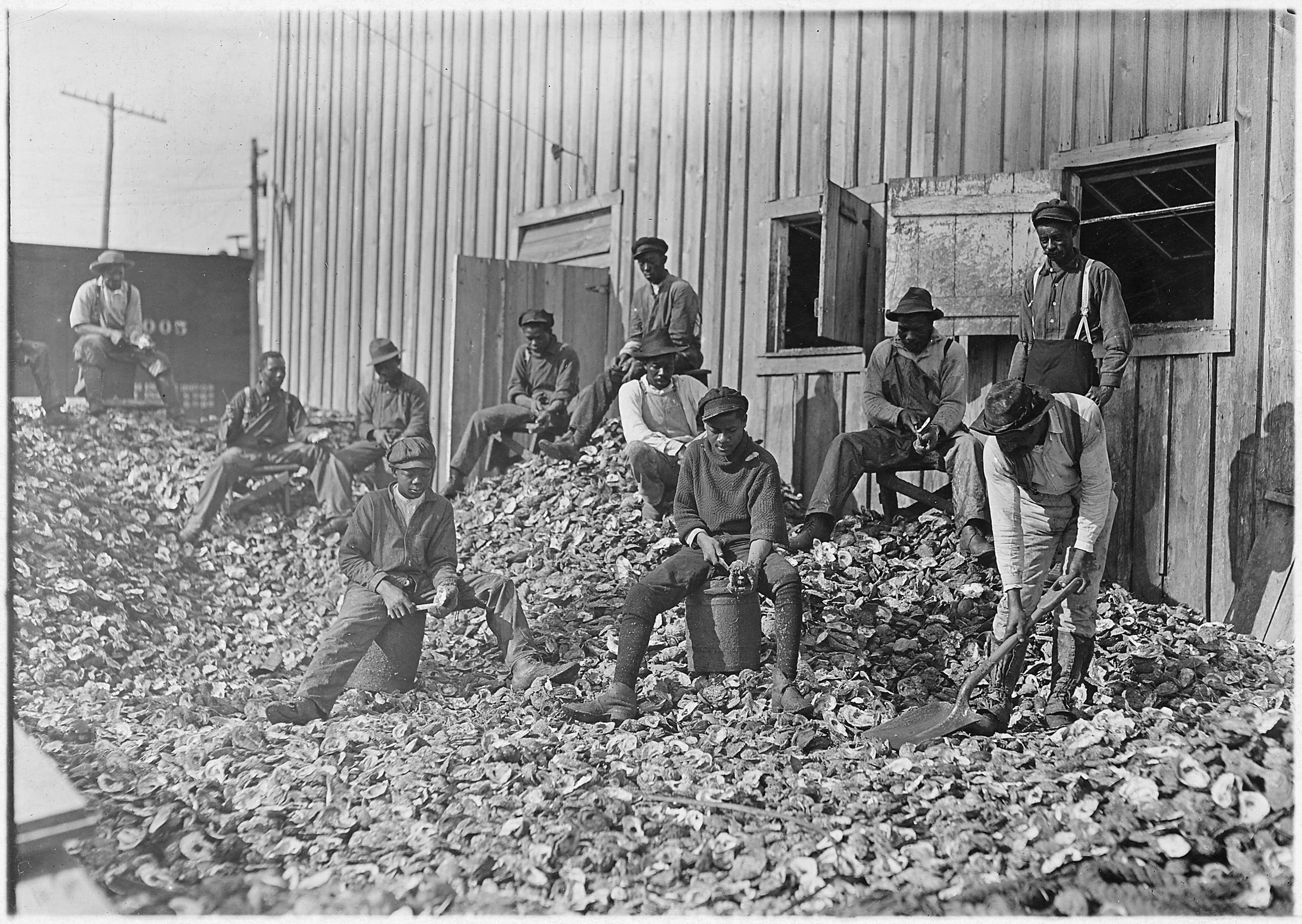 File Oyster Shuckers At Apalachicola Fla This Work Is