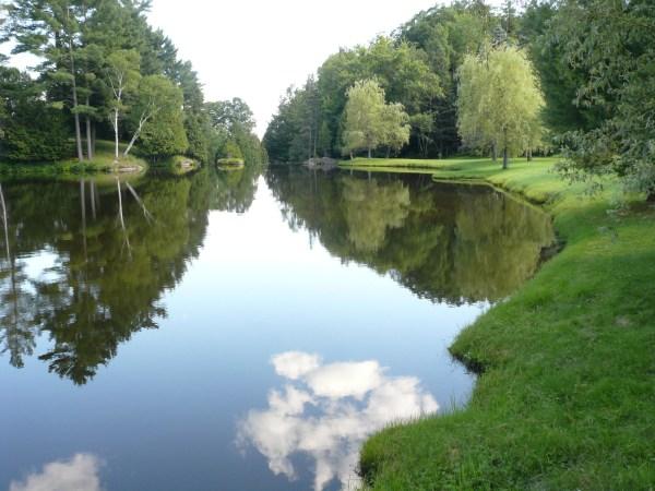 file summer landscape with pond
