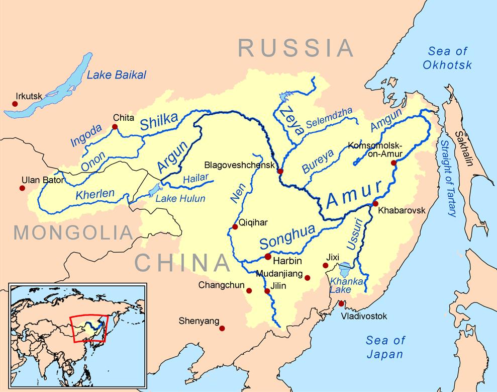 Amur Nehri  Vikipedi