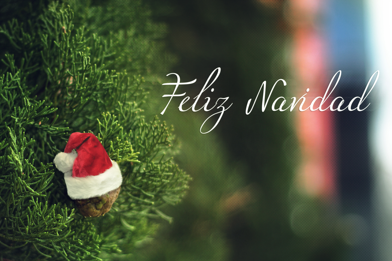 archivo feliz navidad 8300903157