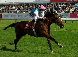 Frankel (horse)