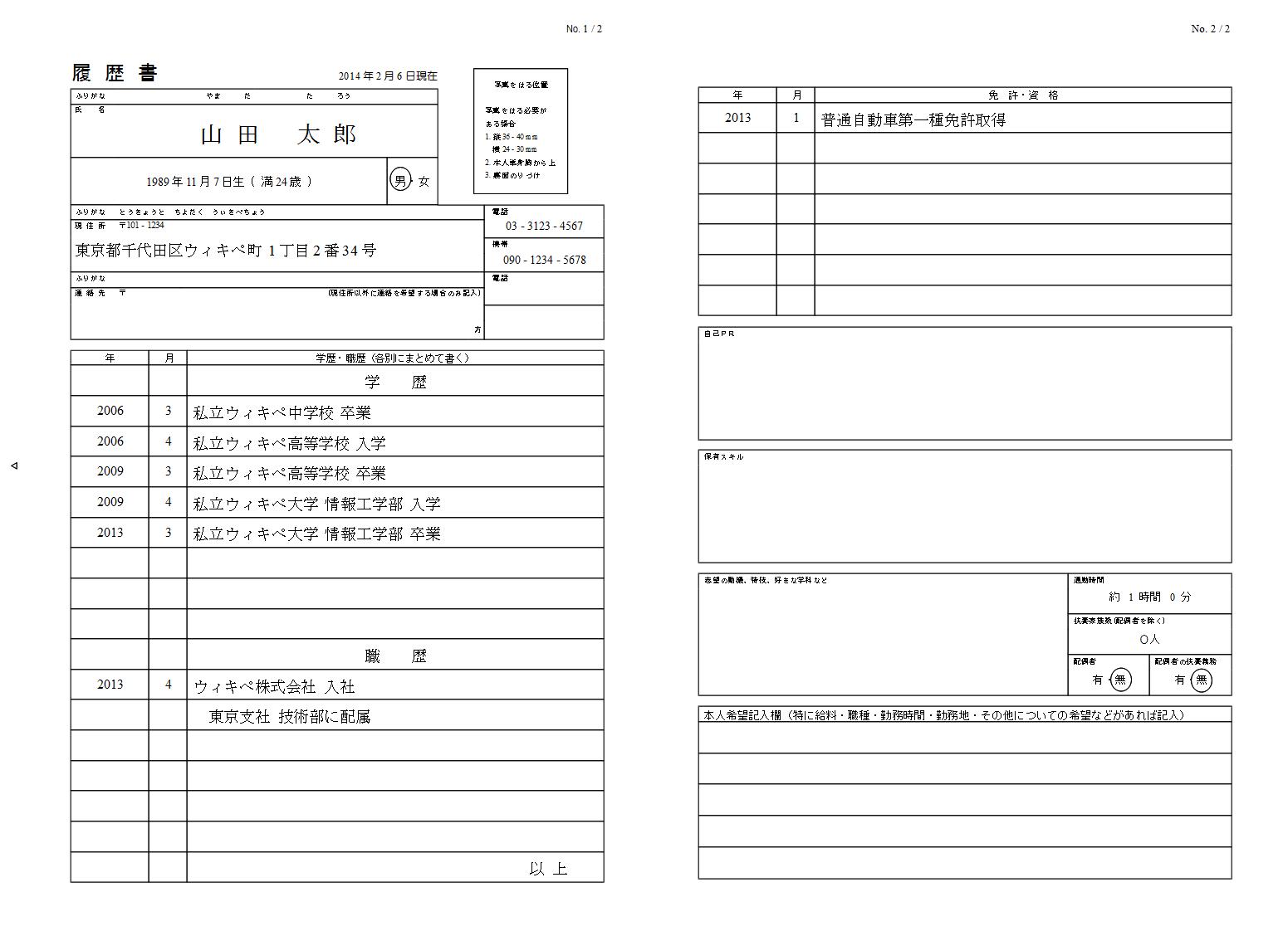 metadata resume sample