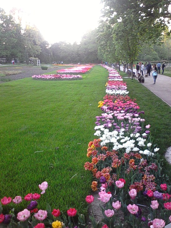 Botanical Garden - Craiova private tour   Customized holiday in Wallachia