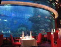Dubai Burj Al Arab Underwater Restaurant