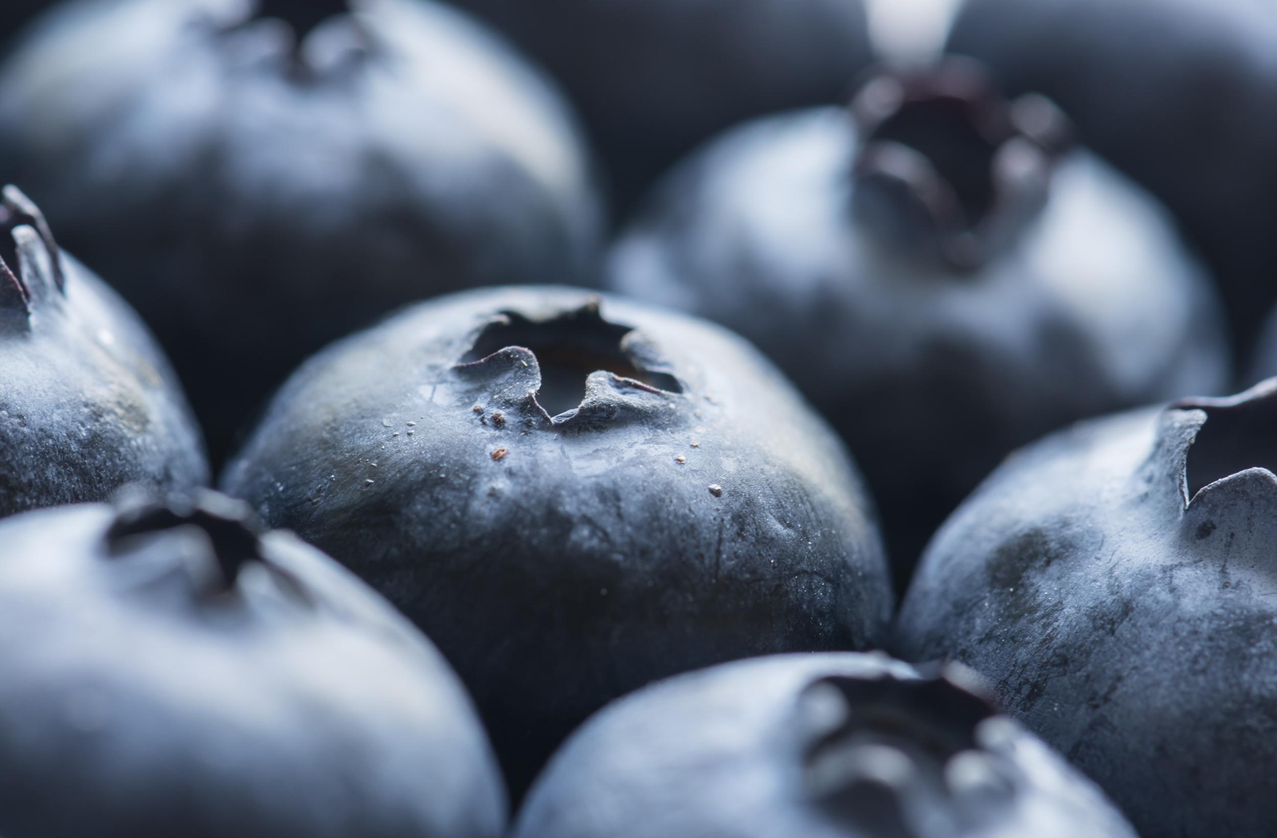 file antioxidant berries bilberry