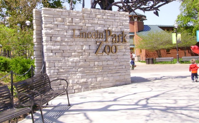Lincoln Park Zoo Wikipedia
