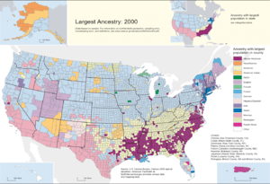 Largest ancestry groups by county, 2000.