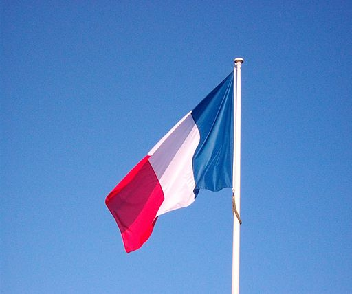 French Flag (5089610330)