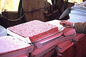 English: Krill meat plates