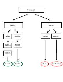 Secret Bases wiki • Biodegradation