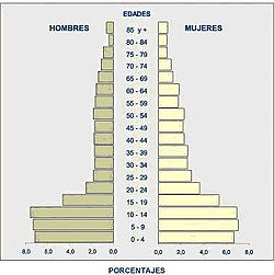 Pirámide de la población del Cantón Chunchi