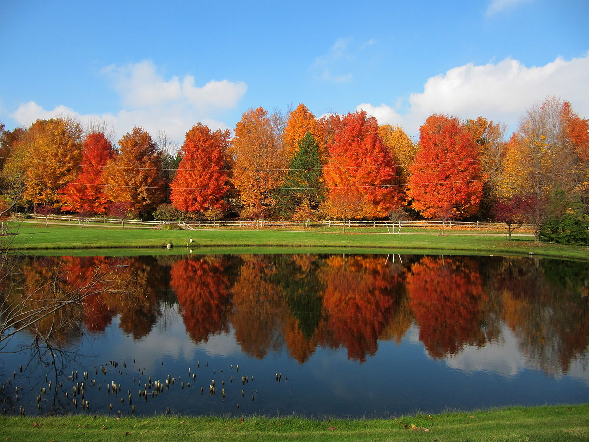 Wallpaper Fall Weather Grandville Michigan Wikipedia