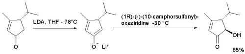 enolate oxidation example ref. Hughes 2005