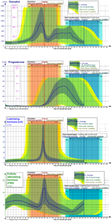 menstrual cycle diagram with ovulation virus worksheet - wikipedia