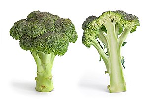 Broccoli on doctorfoodtruth