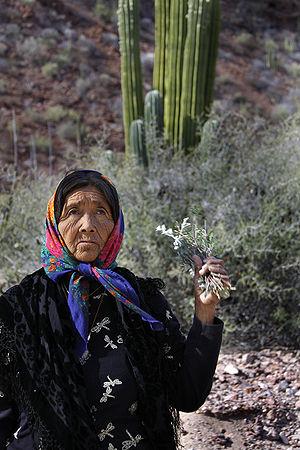 Doña Ramona, a Seri shaman from Punta Chueca, ...