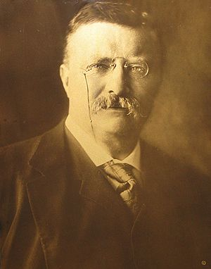 English: Orotone of Theodore Roosevelt as Pres...