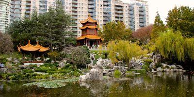 China Garten Bambus   Kontakt   Chinesisch, Sushi ...