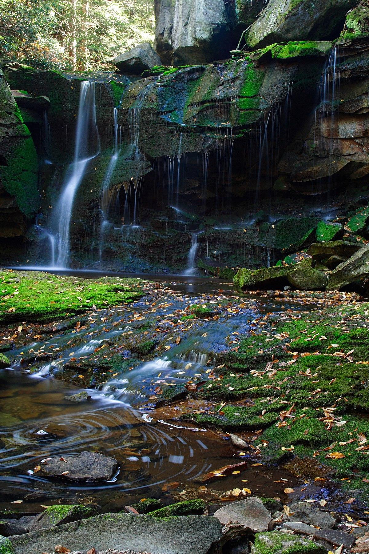Natura  Wikipedia