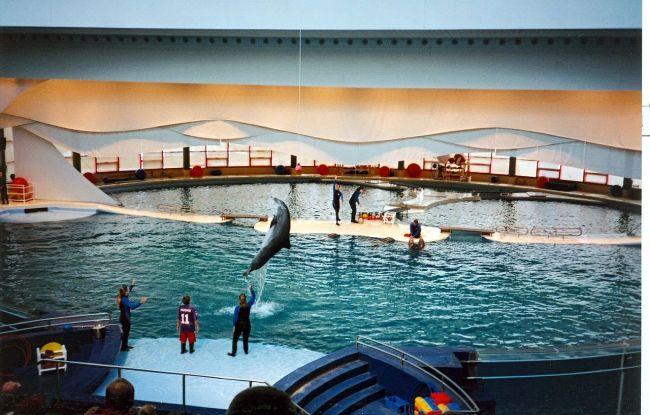Of National Aquarium In Baltimore Boomsbeat