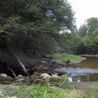 Alapaha River Sink and Rise