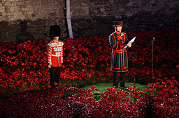 256px-Blood_Swept_Lands_and_Seas_of_Red_-_Roll_of_Honour_at_sunset On Remembrance