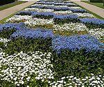 Jardin de flores geométrico en Tours (Francia)