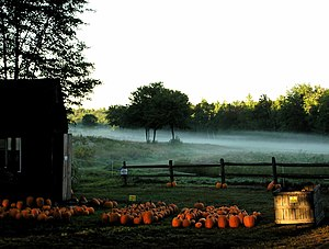 English: morning mist