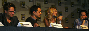 The cast of The Big Bang Theory on a panel at ...
