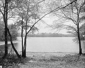 Thoreau's Cove, Concord, Massachusetts. Thorea...