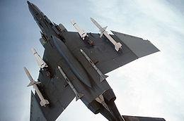 AIM-7麻雀飛彈 - 維基百科。自由的百科全書