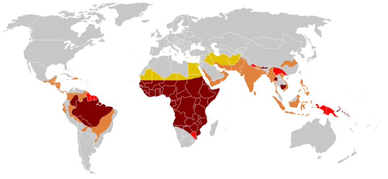 File:Paludisme - Frequence statistique.png