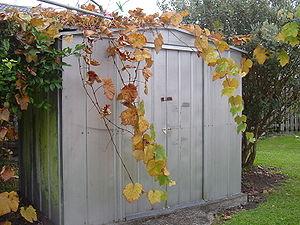 A photograph of a traditional metal garden she...