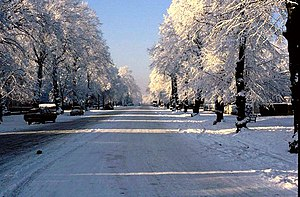 English: Binswood Avenue in the sun and snow. ...