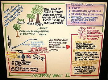 Some SFI Thoughts by Geoffrey West