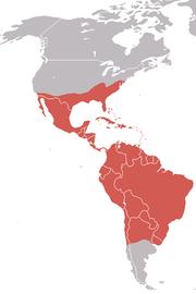 Peta persebaran Hering Hitam Amerika.