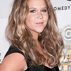 La Z Boy Martin Big And Tall Executive Office Chair Brown Dining Table 6 Chairs Sets Amy Schumer Wikipedia