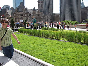 Opening of the new green roof on the podium of...