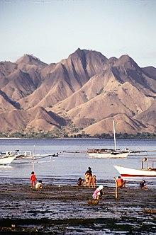 Tarian Rote : tarian, Tenggara, Wikipedia