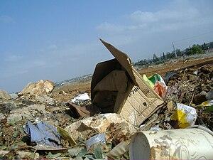 Environment of Israel