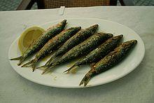 Pesce azzurro  Wikipedia