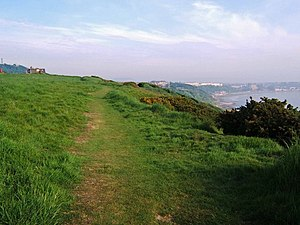 Wheatcroft Cliff Path. This is the cliff path ...